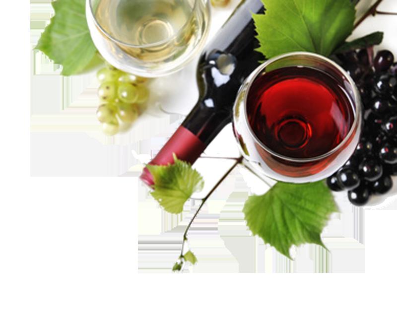 Vino bianco e vino rosso